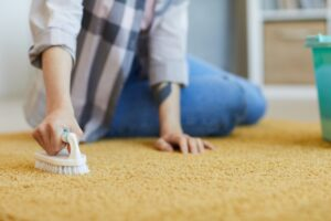 End of lease carpet cleaning Abbotsbury