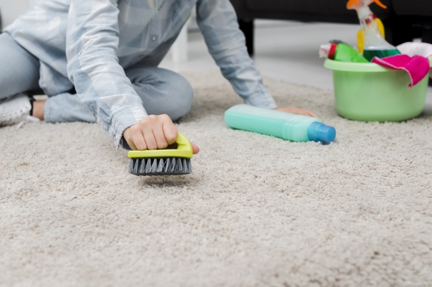 Carpet steam cleaning Picton