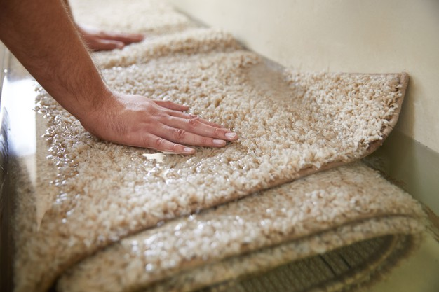 End of lease carpet cleaning Manly