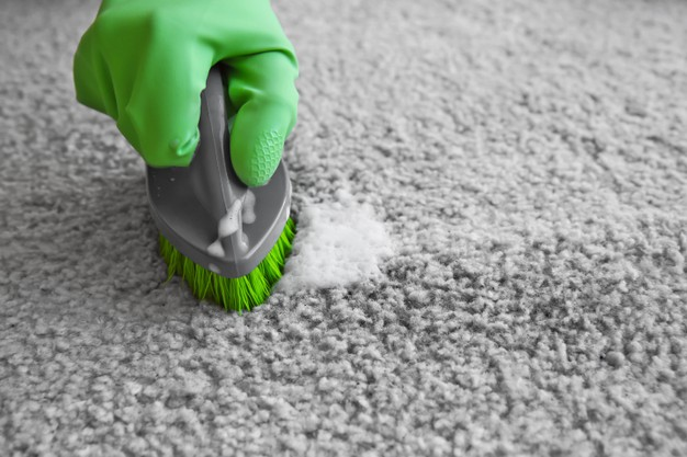 End of lease carpet cleaning Airds
