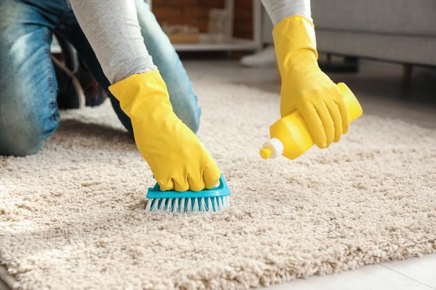 Carpet steam cleaning Hurstville