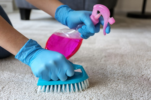 End of lease carpet cleaning Ryde