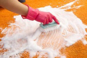 Carpet steam cleaning Maldon