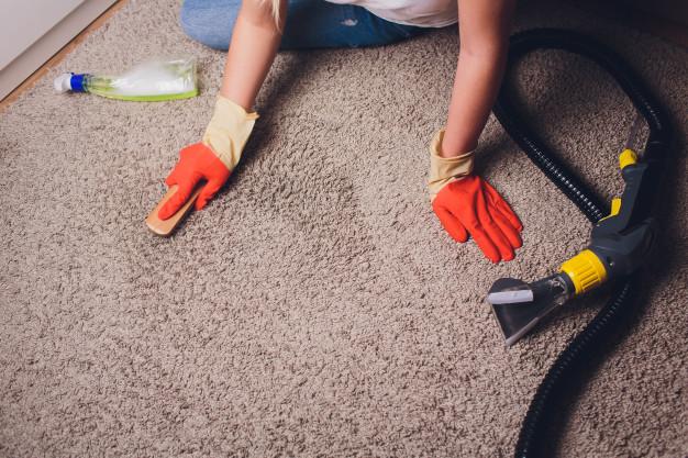 Carpet steam cleaning Campbelltown